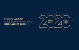 aucop-voeux 2020-evenementiel-audiovisuel-decoration-atelier deco-video-sonorisation-eclairage